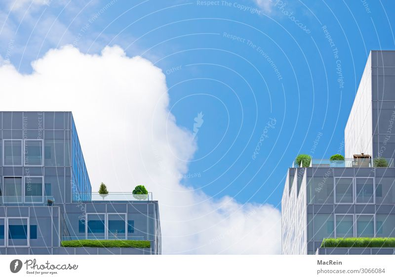 Planted roof garden Sky Clouds Tree Flower Grass Bushes Foliage plant Agricultural crop Pot plant Garden High-rise Facade Balcony Terrace Window Roof Blue Green