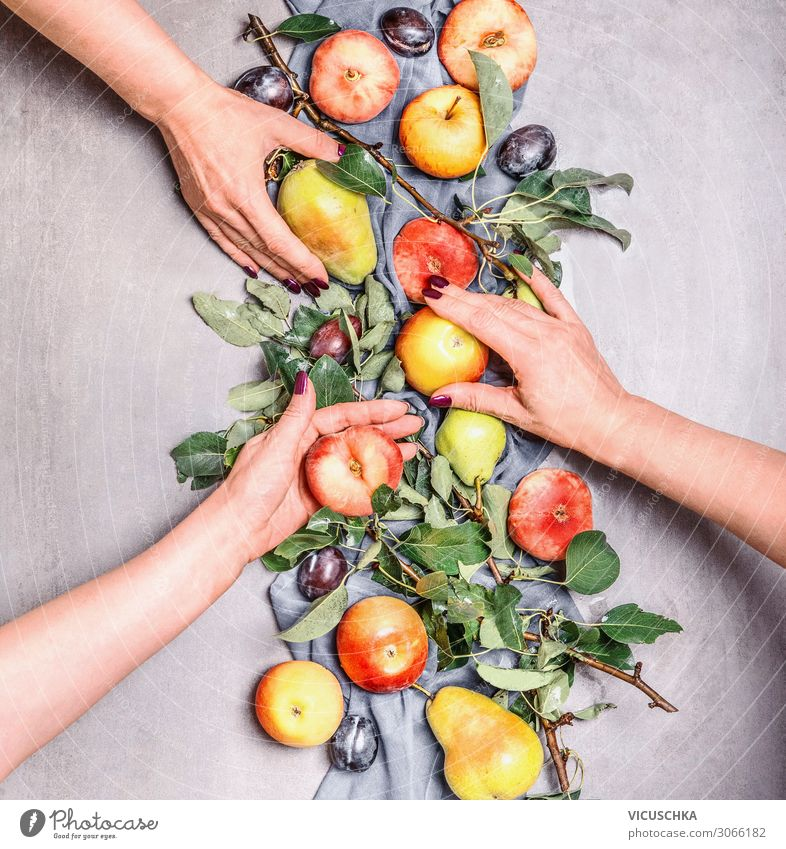 Women's hands holding seasonal fruit from the garden Food Fruit Apple Lifestyle Shopping Design Healthy Eating Human being Woman Adults Hand Organic produce