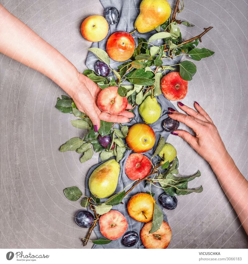 Two women's hands holding organic fruit Food Fruit Apple Shopping Design Healthy Eating Garden Human being Woman Adults Hand Vitamin Background picture Peach