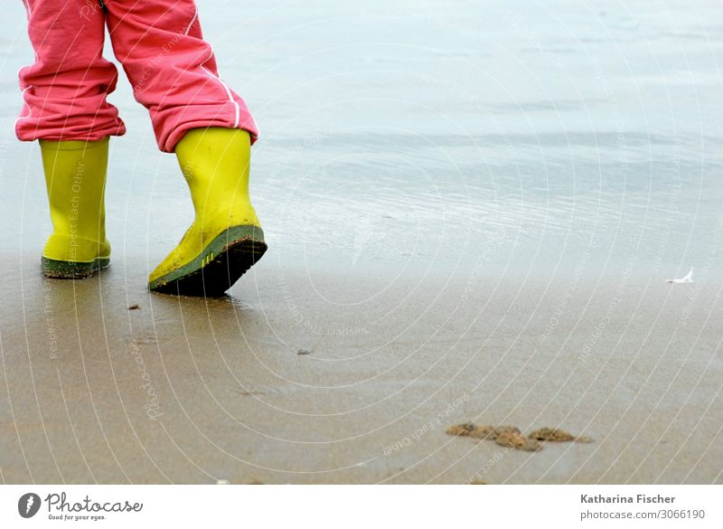 Nature Blue Green Water Ocean Beach Autumn Yellow Spring Pink Sand Waves Stand To go for a walk North Sea Rubber boots