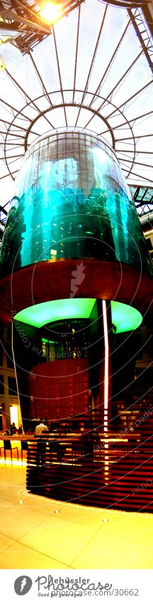 aquarium standing Aquarium Vertical Panorama (View) Elevator Foyer Water Glass Berlin hotel lift ... Large