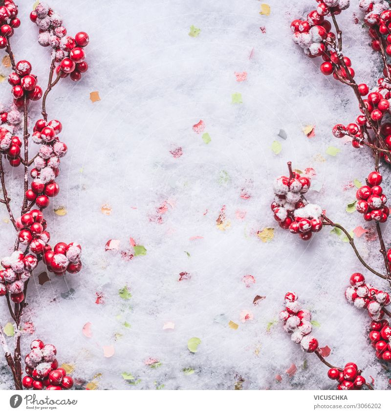 Red frozen berries on snow. Background Frame Style Design Winter Feasts & Celebrations Christmas & Advent Nature Snow Decoration Background picture Frost Frozen
