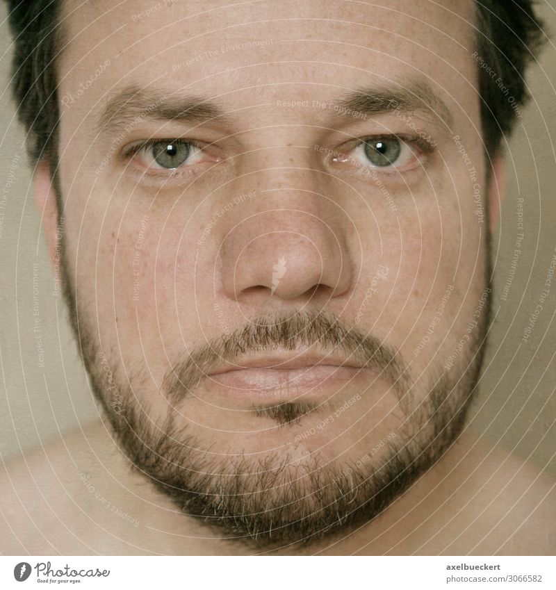 Headshot of a bearded man Human being Masculine Man Adults Face 1 30 - 45 years Black-haired Brunette Short-haired Facial hair Designer stubble Beard Authentic