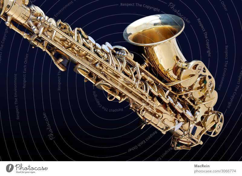 sax Art Artist Shows Music Concert Orchestra Listen to music Saxophone Instrumental music Musical instrument Wind instrument Metal Gold Brass Colour photo