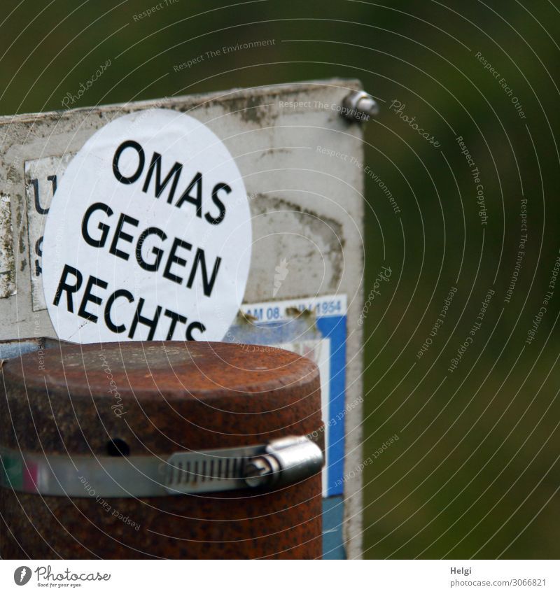 """Sticker """"Omas gegen Rechts"""" on a metal plate Pole Characters Signs and labeling Fight Exceptional Sharp-edged Uniqueness Feminine Brown Gray Green White Force"""