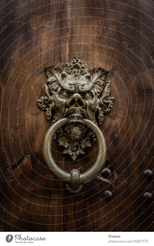 ...in. Door Aggression Threat Knocker Circle Face Devil Metal fitting Medieval times Gate Detail