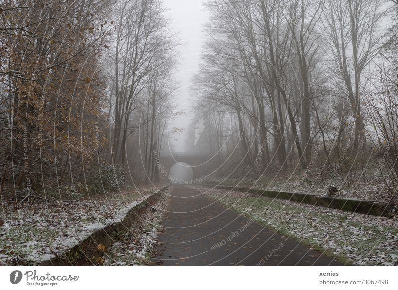 nebulous | former railway line with some snow Fog Winter Cycling Cycle path Autumn Ice Frost Snow Tree Mountainous area Balkan route Bridge Pedestrian