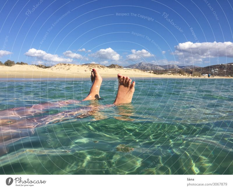 Feet in the sea Beach Island Looking Tourism Water Ocean Float in the water Colour photo Exterior shot Copy Space right Copy Space top Sunlight