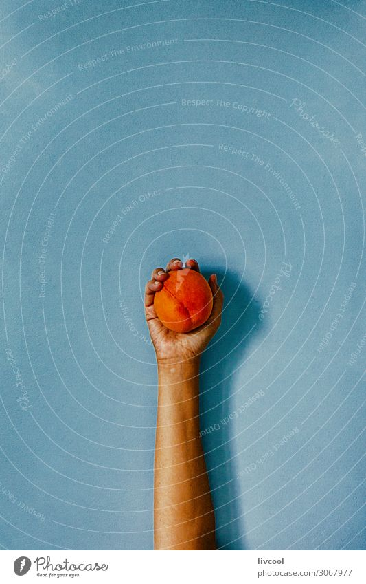 hand hugging a peach on blue wall Fruit Lifestyle Design Human being Woman Adults Arm Hand Fingers Nature To enjoy Embrace Fresh Blue Colour Peach orange people