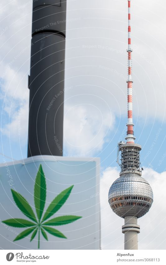 Legalize Berlin ! Downtown Berlin Capital city Television tower Berlin TV Tower Smoking Vacation & Travel Aggravation Experience Joy Friendship Mysterious