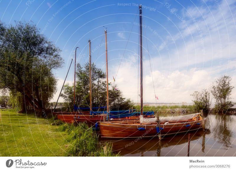 Vacation & Travel Water Watercraft Footbridge Sailboat Lower Saxony Vacation destination Steinhuder Lake