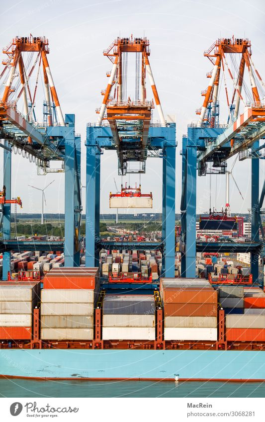 container port Logistics Stock market Means of transport Container Hang Container terminal Erase Colour photo Exterior shot Deserted