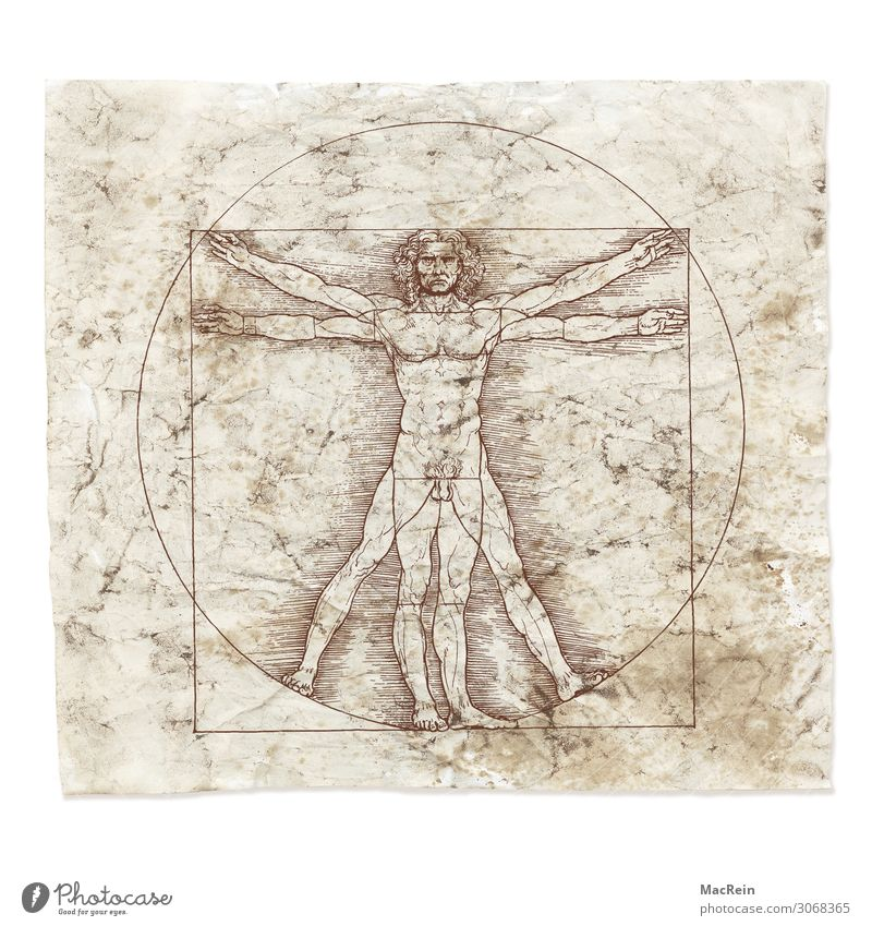Leonardo da Vinci Science & Research Art Artist Painter Sign Past Construction Circle Paper Drawing Colour photo Interior shot Close-up