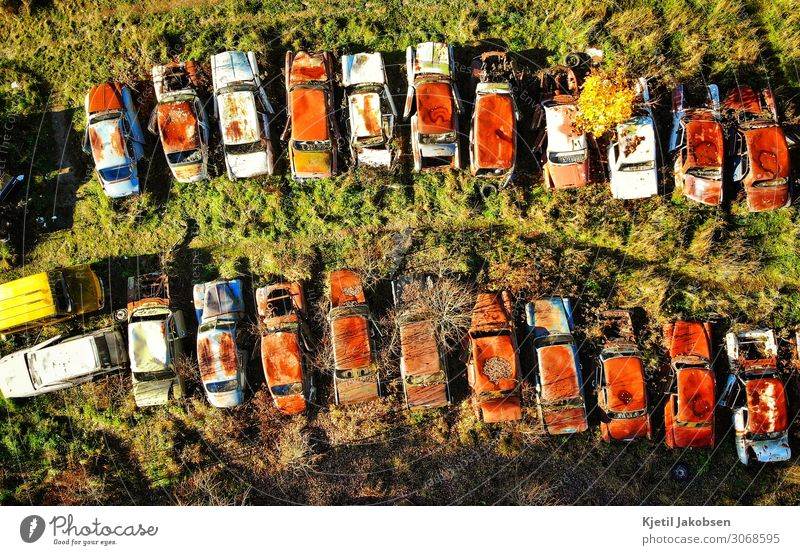 Rusty cars from above Summer Climate change Vehicle Car Vintage car Old Retro Brown Multicoloured Green Fatigue Leisure and hobbies Nostalgia Stagnating