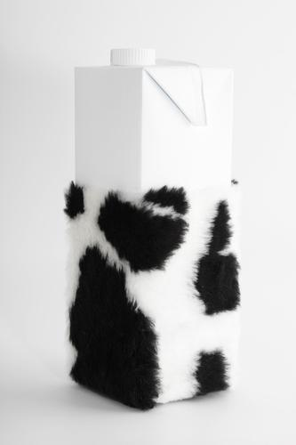 Milk carton with cowhide Food Nutrition Beverage Pelt Healthy Health care Symbols and metaphors Paper bag Packaging material Cowhide Black White Speckled