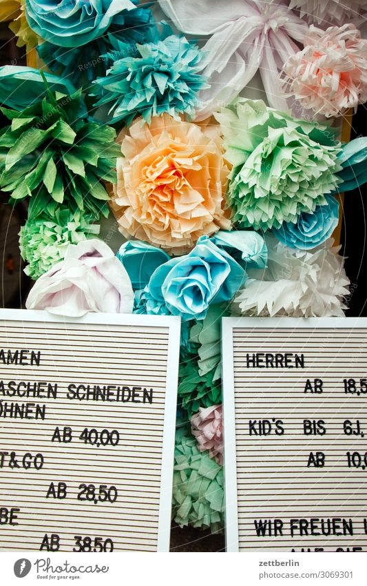 prices Shop window Flower Blossoming Decoration Garden Market garden Deserted Copy Space Rose Colour Multicoloured Art Kitsch Artificial flowers Replication