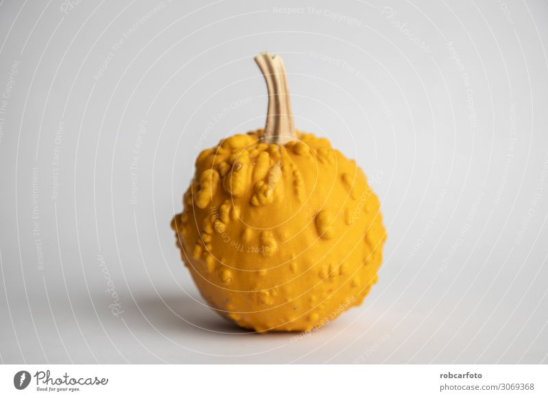 perfect pumpkins on white background Vegetable Decoration Thanksgiving Hallowe'en Plant Autumn Fresh White Pumpkin orange food Mature isolated seasonal Single