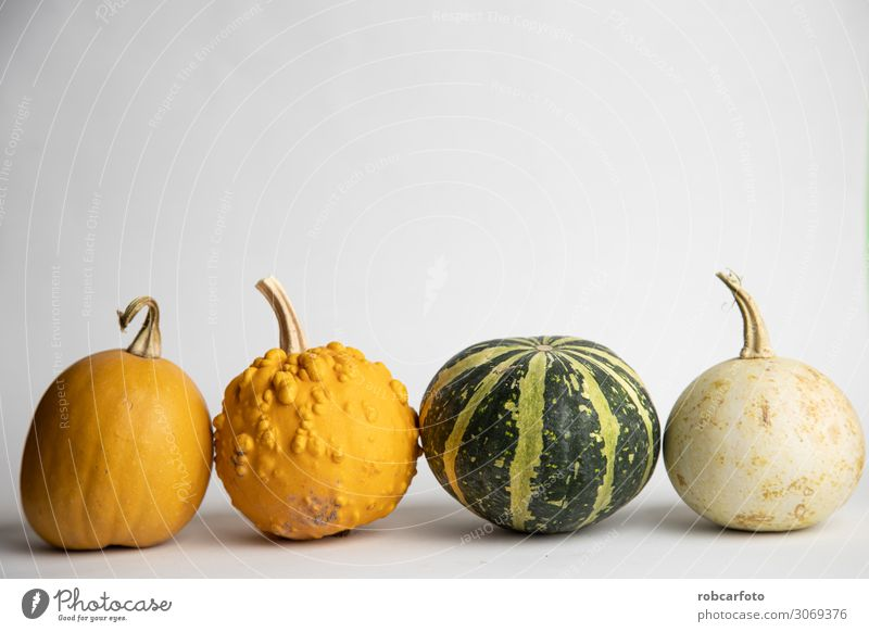 perfect pumpkins on white background Plant White Autumn Decoration Fresh Vegetable Harvest Mature Hallowe'en Raw Pumpkin November Single October Thanksgiving