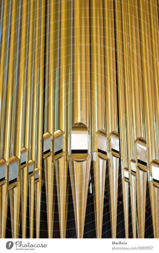 organ pipes Church Calm Belief Religion and faith Organ Organ pipe Christianity Gold Colour photo Interior shot Close-up Detail Deserted