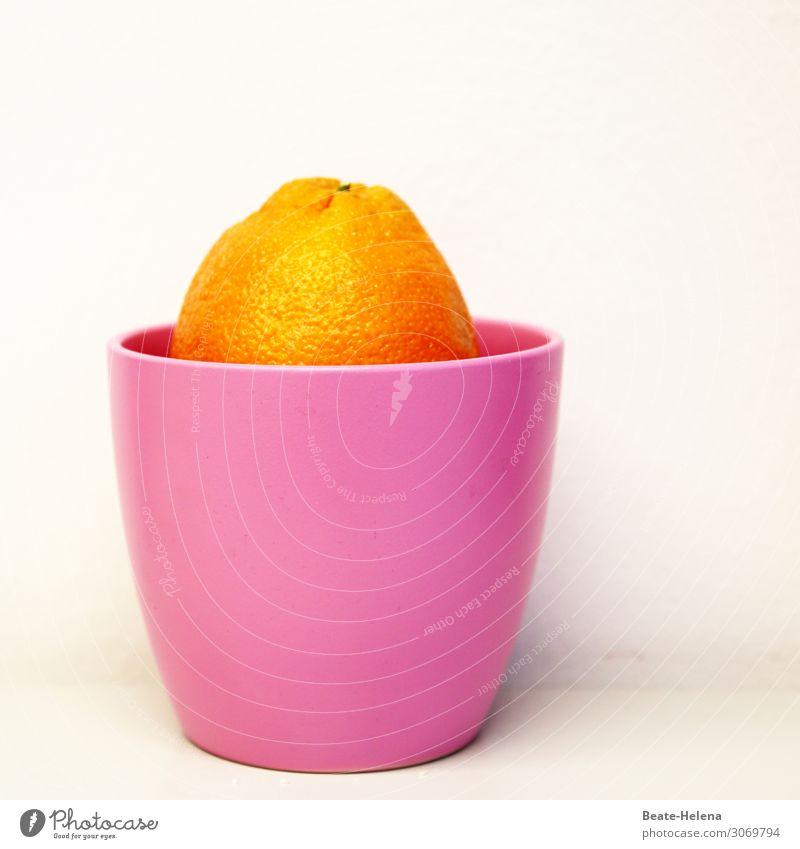 Healthy Eating Beautiful Relaxation Food Orange Fruit Nutrition Illuminate Fresh Glittering Esthetic Fantastic Wait