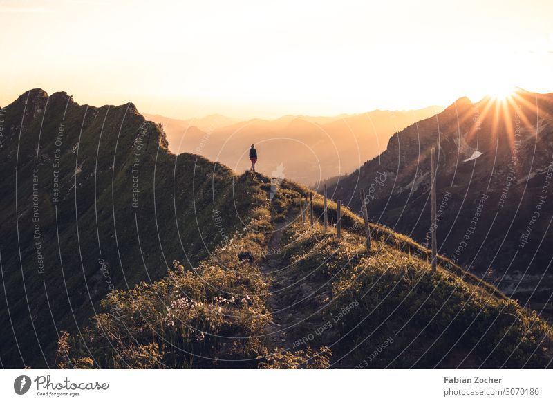 Sunset on the pointer saddle Mountain Hiking Nature Landscape Cloudless sky Sunrise Sunlight Alps Gigantic Happy Allgäu AllgäuerHigh Alps Mountaineering Germany
