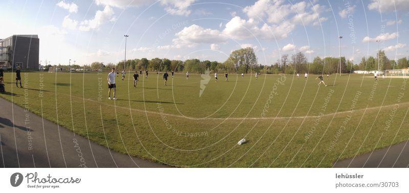 Green Tree Sun Clouds Sports Line Horizon Academic studies Sports team Ball Lawn Sporting grounds