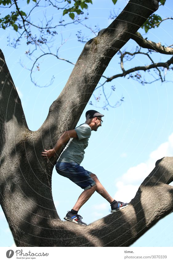 Human being Sky Man Tree Adults Life Sports Masculine Beautiful weather Fitness Observe Branch Curiosity Safety To hold on Climbing