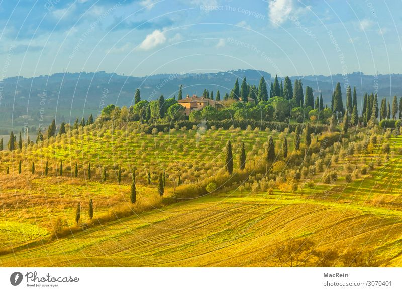 Crete Senesi House (Residential Structure) Landscape Fog Hill Moody Calm Loneliness Travel photography Tuscany Italy Dawn Colour photo Exterior shot Deserted