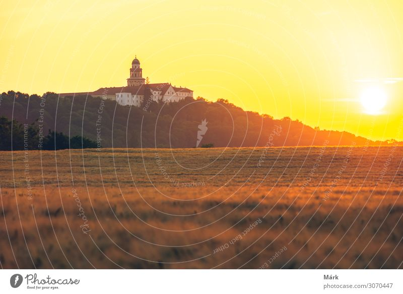 Pannonhalma Archabbey with wheat field on sunset Vacation & Travel Tourism Summer Nature Landscape Sky Clouds Horizon Sun Meadow Field Hill Small Town Church