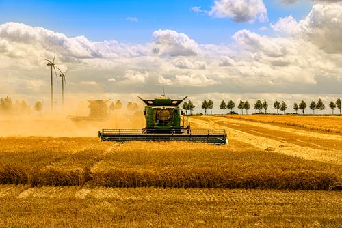 Sky Nature Summer Blue Green Landscape Sun Clouds Black Autumn Yellow Work and employment Field Gold Agriculture Farm