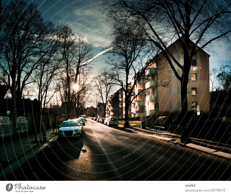 street lighting Sky Clouds Beautiful weather Tree Town Outskirts Populated House (Residential Structure) Balcony Window Transport Street Sidewalk Car Parking