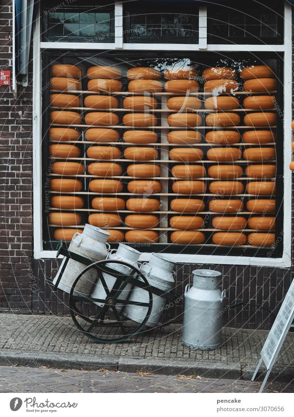 valuable | Dutch gold Food Cheese Dairy Products Nutrition Small Town Pedestrian precinct Wall (barrier) Wall (building) Window Authentic Historic Delicious