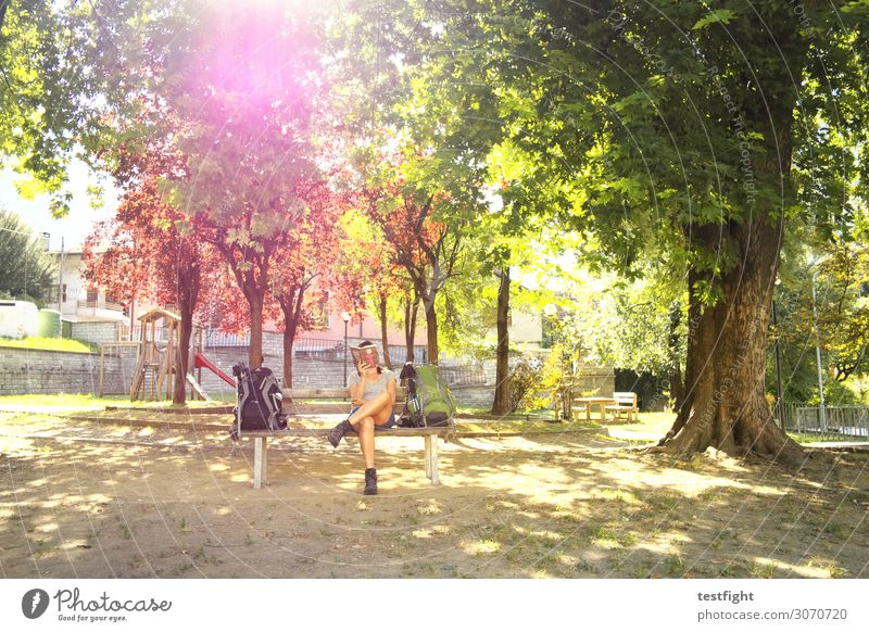 the burner and the love god Reading Feminine Woman Adults 1 Human being Garden Park Sit Relaxation Pastime Wait Bench Break Tree Nature Summer Book Colour photo
