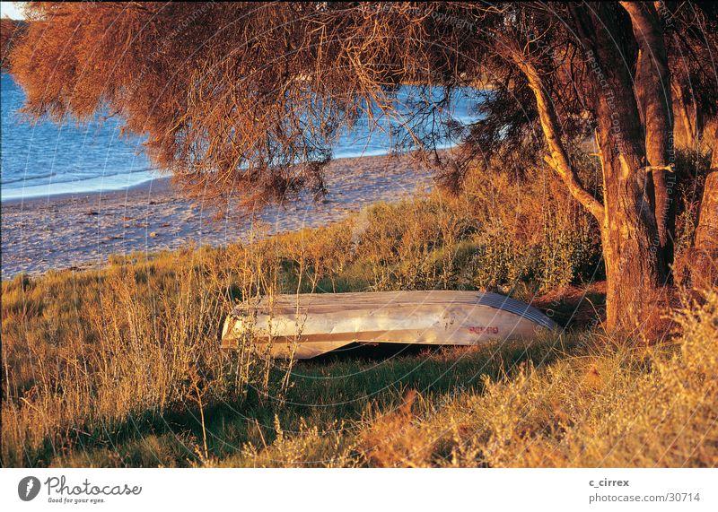 evening mood Australia Western Australia Coast Dusk Rowboat beach