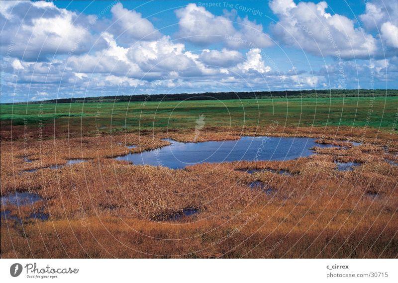 Sky Clouds Rain Australia Northern Territory Kakadu National Park
