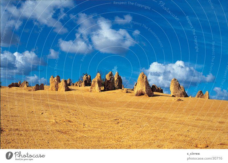 pinnacles Nambung National Park Australia Western Australia Sand petrified