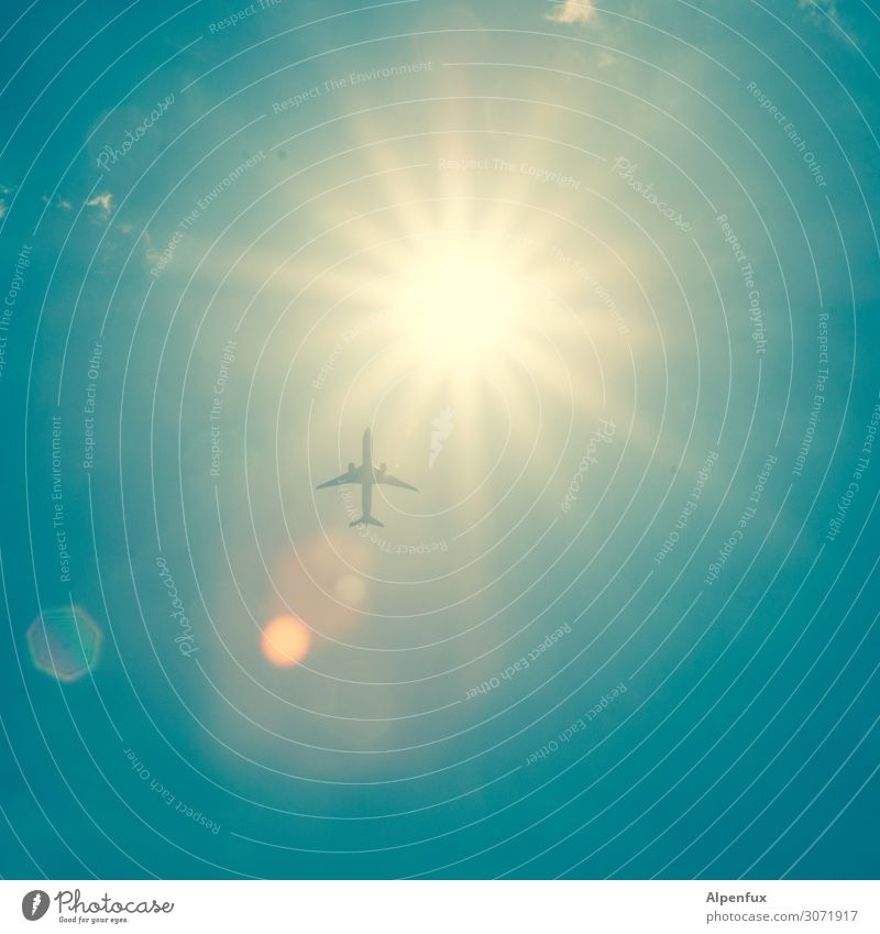 Off to the sun Aviation Airplane Flying Longing Homesickness Wanderlust Shame Fear Fear of heights Fear of flying Adventure Business Apocalyptic sentiment
