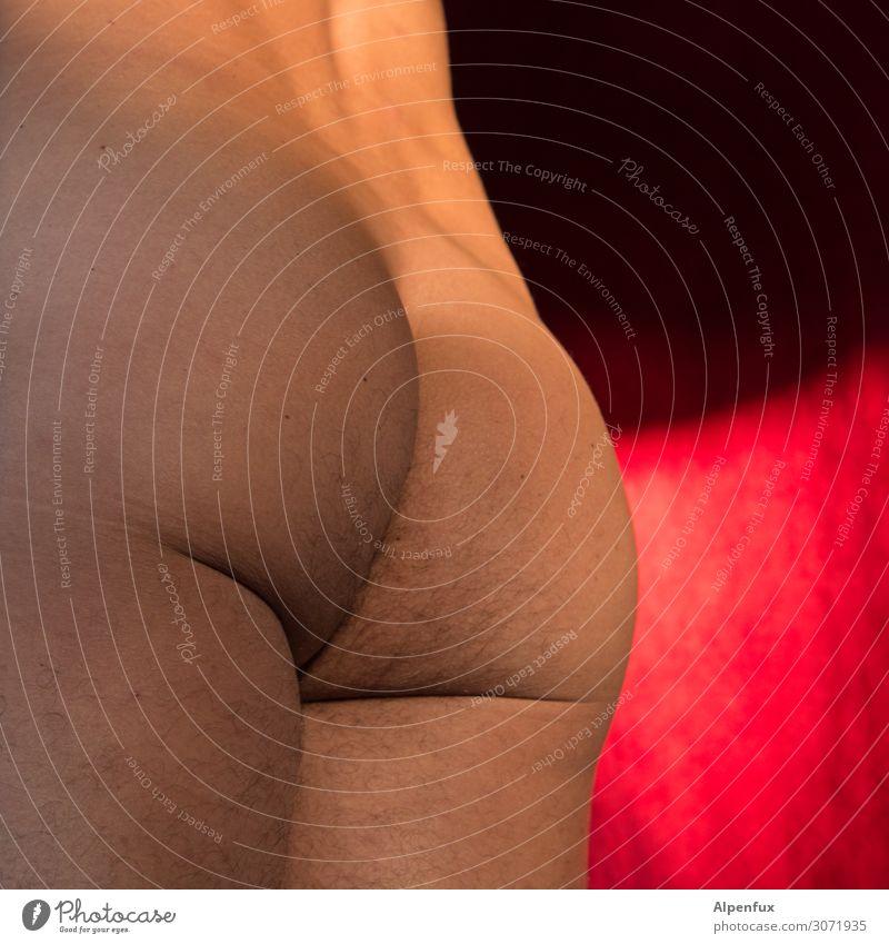 Monday's an ass! Masculine Man Adults Back Bottom 45 - 60 years Naked Eroticism Romance Desire Lust Sex Arrogant Voluptuousness Senior citizen Resolve
