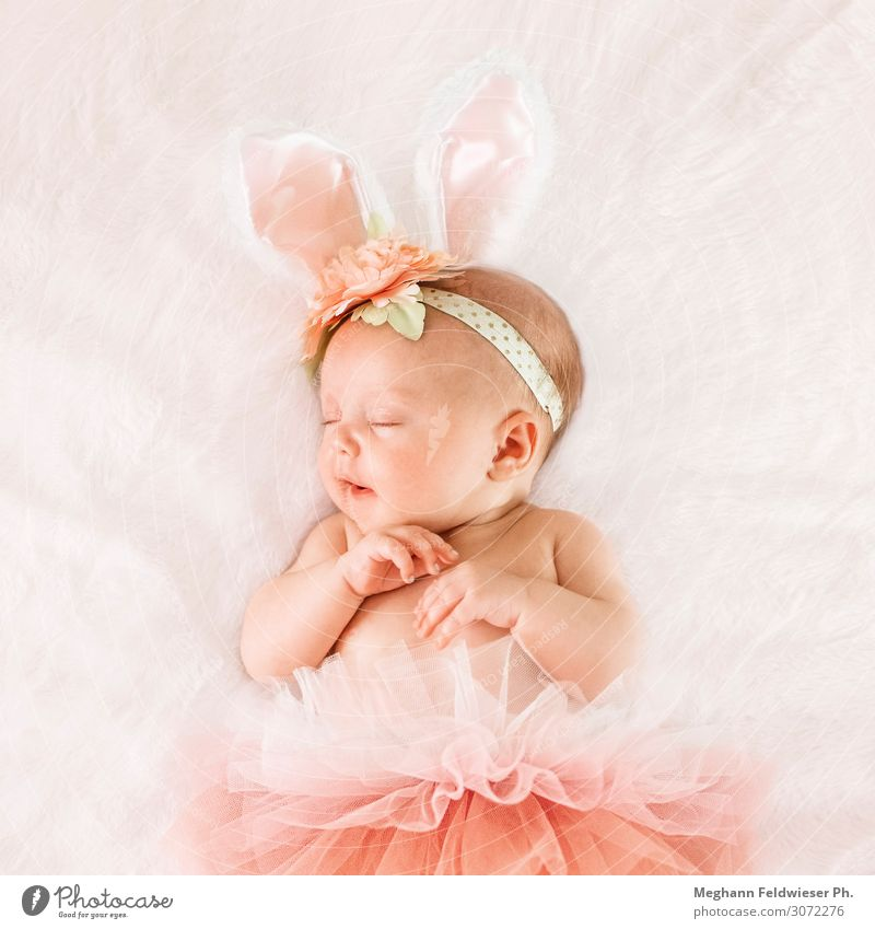 Baby bunny Calm Infancy 0 - 12 months Cute Pink Safety (feeling of) Beautiful Grateful Serene Beginning Inspiration Love Sleeping Beauty Colour photo