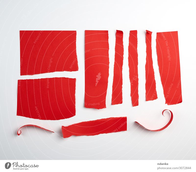 various torn strips of red paper Design Office Craft (trade) Band Lanes & trails Paper Collection Clean Red White backdrop background Blank colorful