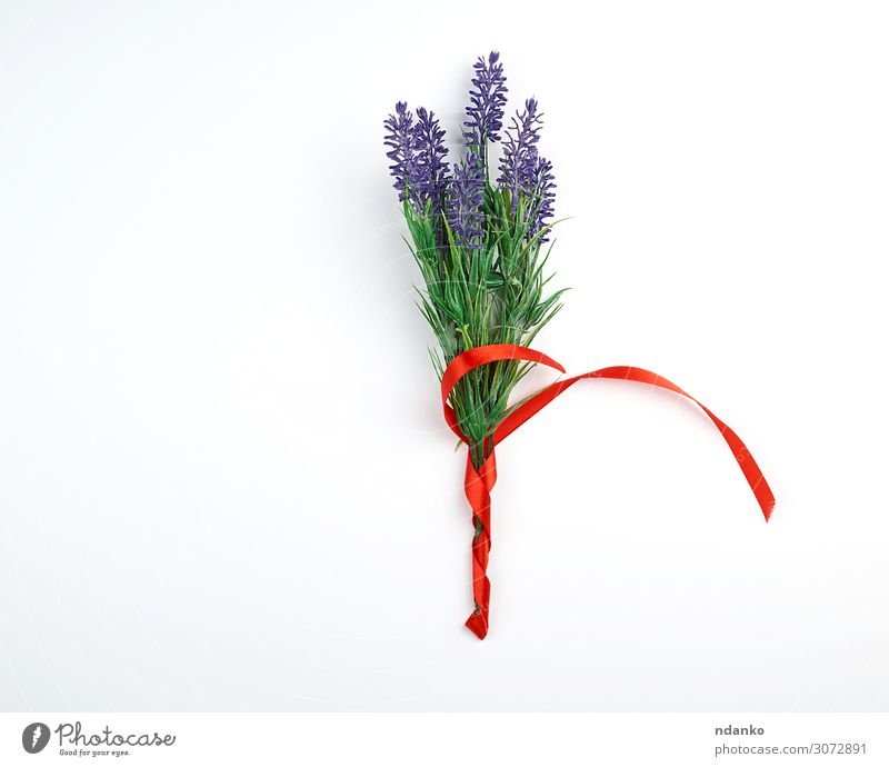lavender bouquet and red ribbon Feasts & Celebrations Wedding Birthday Plant Flower Blossom Bouquet String Blossoming Write Above Green Red White Romance