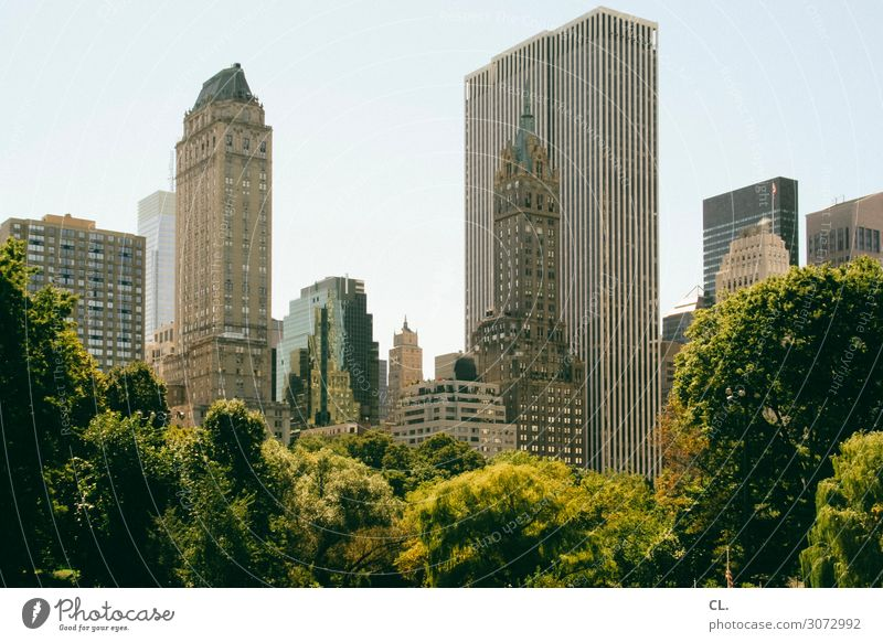central park Environment Nature Cloudless sky Summer Beautiful weather Tree Park New York City Manhattan Central Park USA Town Downtown Deserted High-rise