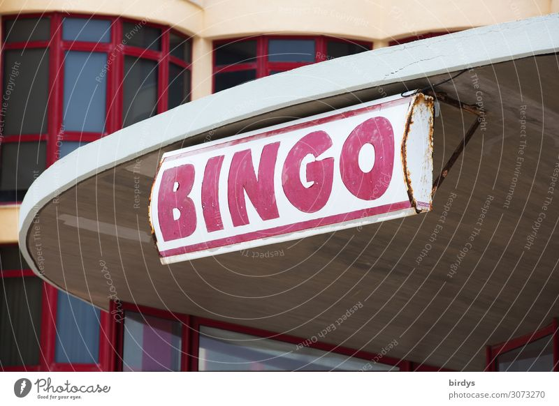 bingo Lifestyle Playing Game of cards Game of chance Going out Town House (Residential Structure) Building Window Billboard Characters Authentic Success