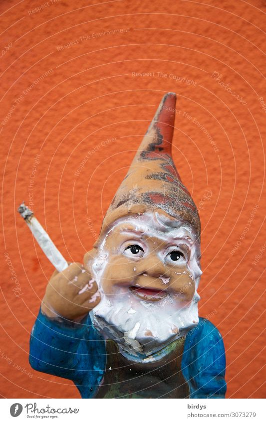 also popular with dwarves Intoxicant Garden gnome Joint Smiling Smoking Brash Funny Blue Red White Joy Euphoria Drug addiction Serene Society Cannabis