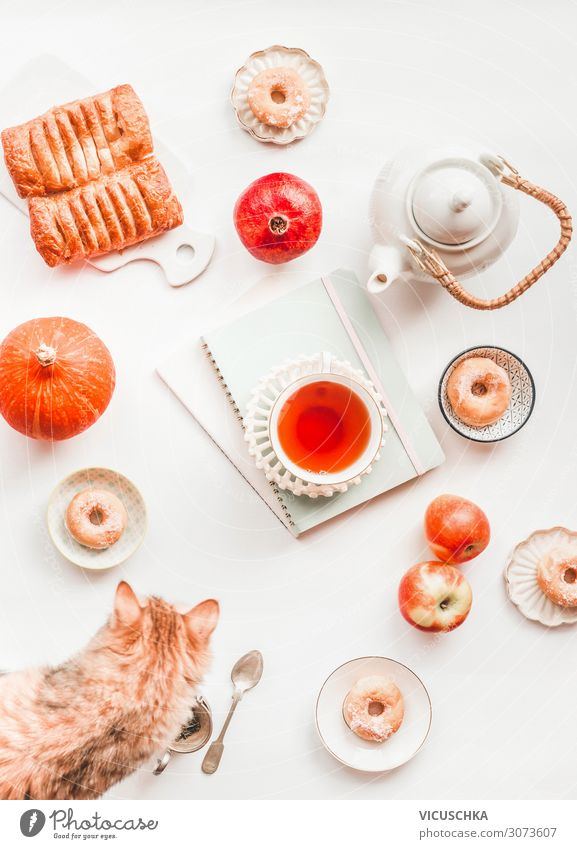 Cozy autumn still life flat lay with pumpkin. Composition of white tea set, ginger cat, pastry, mini donuts, red apples and cup of tea on blank notebooks and albums on white background. Top view