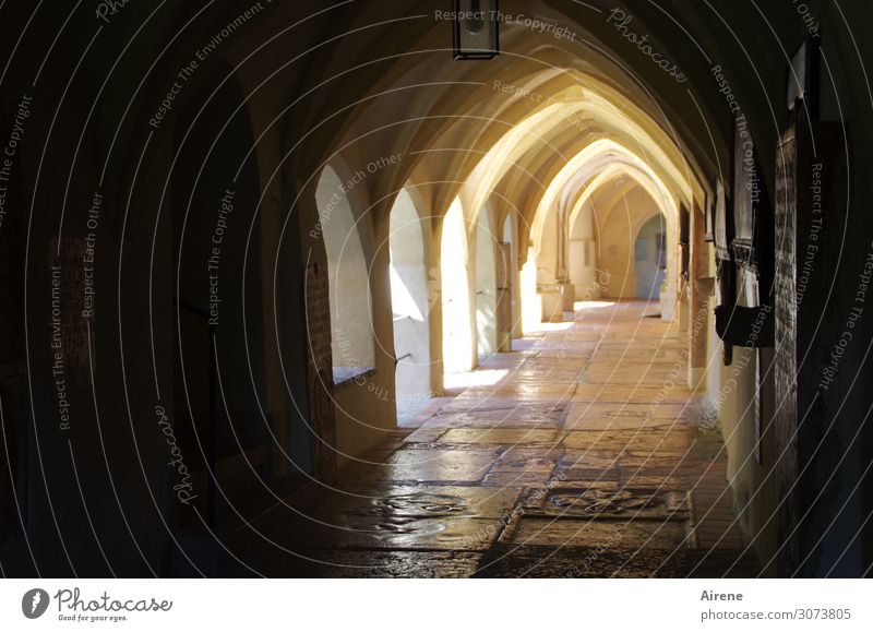 towards the light Architecture Church Arcade Monastery Tourist Attraction Sign Ornament Tombstone Marble floor Archway Going Bright Historic Positive Brown Gold