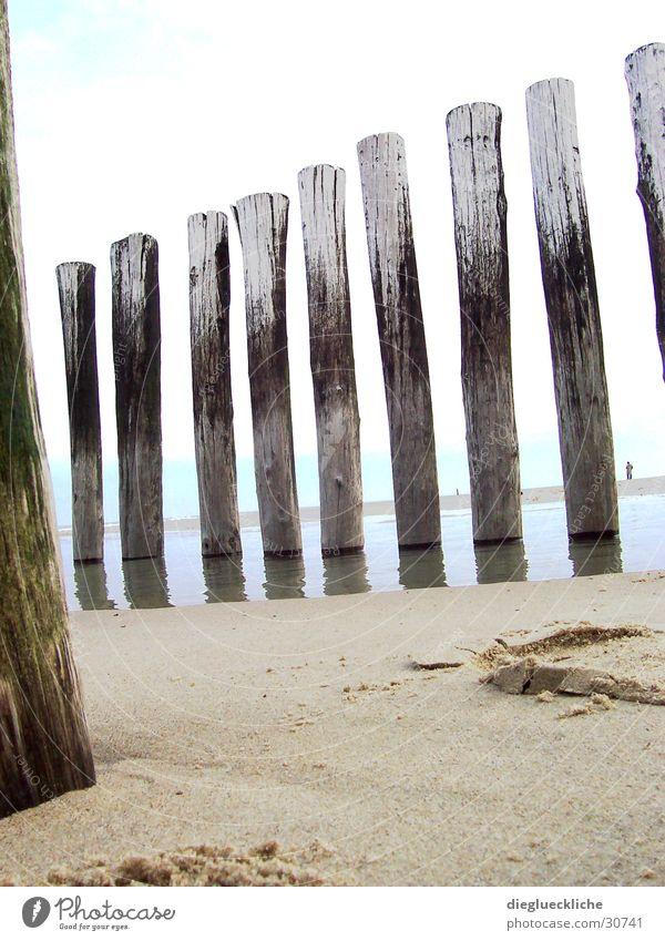 beach Ocean Beach Wood Water