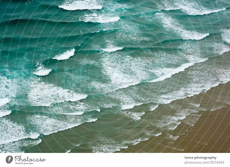 Experience the sea New Zealand Waves Ocean ocean Coast Water Beach Nature White crest Surf Surfing Abstract Pattern Aerial photograph