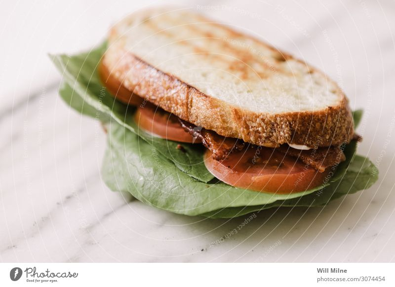 Bacon Lettuce Tomato Sandwich Meal Lunch Bread BBQ Food Dish Food photograph Appetite Marble Green Red