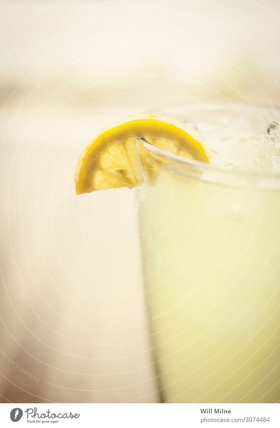 Lemonade with a Slice of Lemon Beverage Drinking Cold Summer Yellow Citrus fruits Glass Close-up